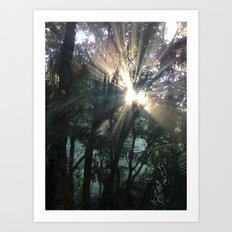 Waimangu Volcanic Valley, Rotorua, New Zealand Art Print