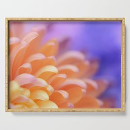 Flower Sunrise | cute pastel flower, peach flowers, orange floral pattern, pretty petals, macro Serving Tray
