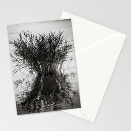 lonely reed Stationery Cards