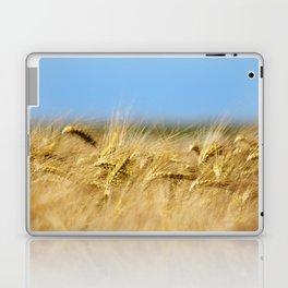 Blue & Gold Laptop & iPad Skin