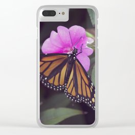 Longwood Gardens Autumn Series 343 Clear iPhone Case