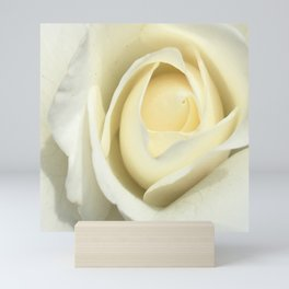 White Rose Of The Parking Structure Mini Art Print