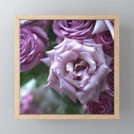 A Rose is a Rose is a Rose... Framed Mini Art Print