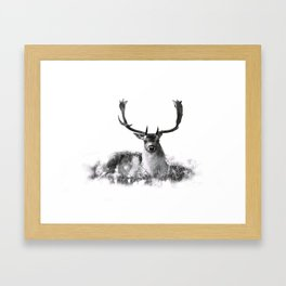 Majestic Stag Framed Art Print