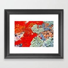 Likin' This Lichen Framed Art Print