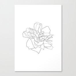 Single rose illustration - Magda Canvas Print