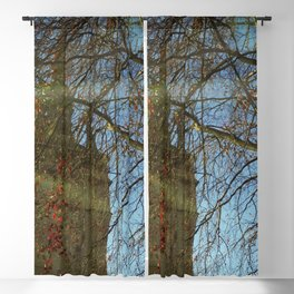 Old Tower And Leafless Branches Blackout Curtain