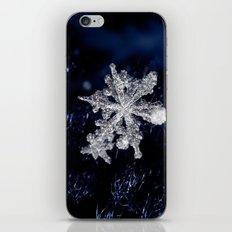 Winter Joy III iPhone & iPod Skin