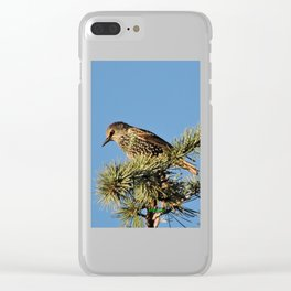 O My Starling, Clementine! Clear iPhone Case