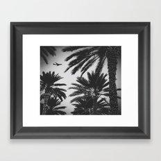 PLANE PALMS Framed Art Print