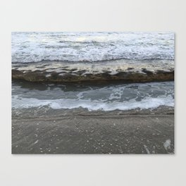 Look at what we've uncovered Canvas Print