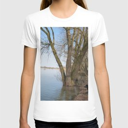 looking into the distance T-shirt