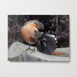 After bath Metal Print