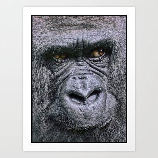 Portrait of a female Gorilla Art Print