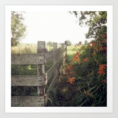 Betty's Fence. Art Print