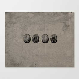 Row o' Brains - Engraving - Vintage - Old Black, White & Brown Canvas Print