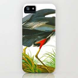 Great blue heron John James Audubon Vintage Scientific Bird Illustration iPhone Case