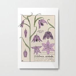 Maurice Verneuil - Fritillaire - botanical poster Metal Print
