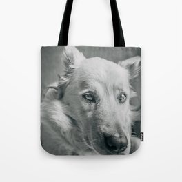 dog portrait in black and white Tote Bag