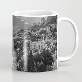 Path along cliffs of Cape Point, South Africa Coffee Mug