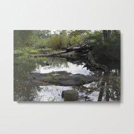 Pathless Woods Metal Print