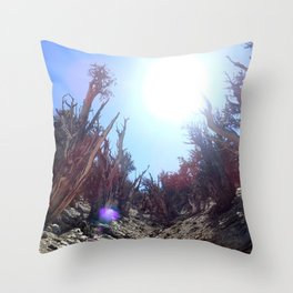 Ancient bristlecone pine forest Throw Pillow