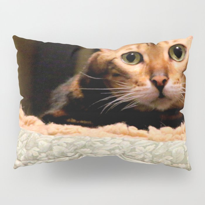 Did You Knock? Pillow Sham