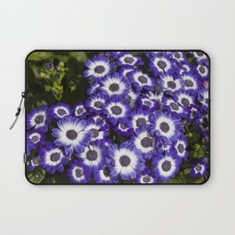 Cineraria Purple Laptop Sleeve