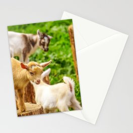 Baby Goats Playing Stationery Cards