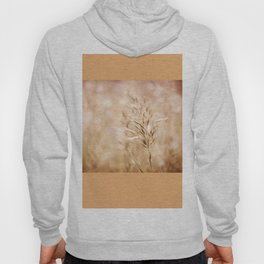 Sepia toned cereal grass inflorescence Hoody