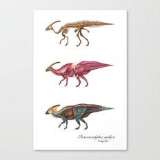 Parasaurolophus Anatomy Canvas Print