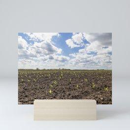 Corn Field 3 Mini Art Print