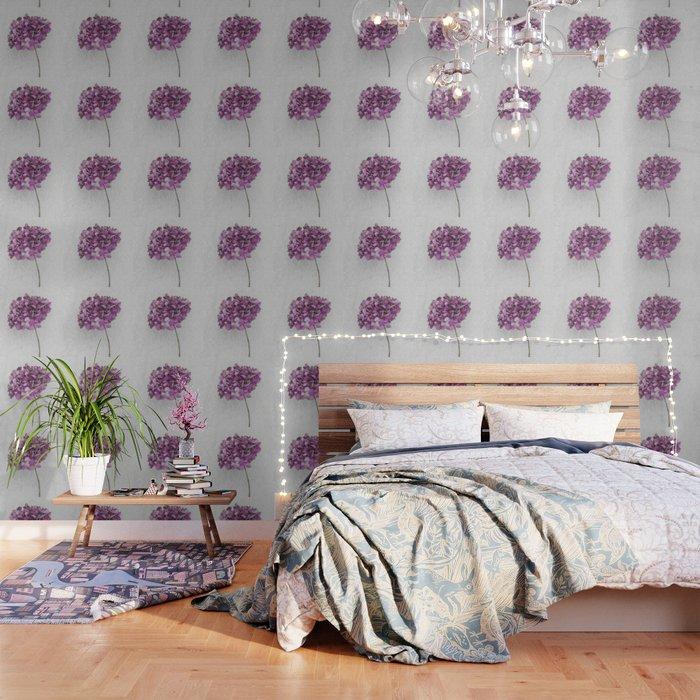 Pink Dried Hydrangea Wallpaper