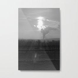 Weide Metal Print