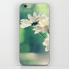 White Daisies - Simplicity iPhone & iPod Skin