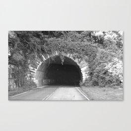 Give Way Canvas Print