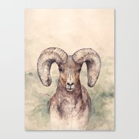 ram Canvas Prints featuring Ram by Joy Paton