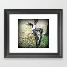 Hi Smokey! Framed Art Print