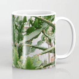 Botanical Cactus Coffee Mug