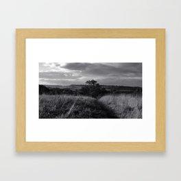 Autumn #02 Framed Art Print