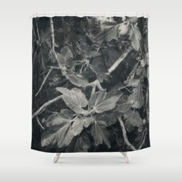 Where is my mind Shower Curtain