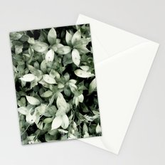 Plant Stationery Cards