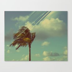 Palm in the Wind Canvas Print