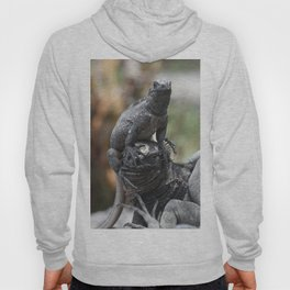 Funny animals - two marine iguanas in the Galapagos Hoody