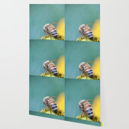 Honeybee on Teal Blue and Yellow Wallpaper