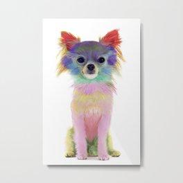 Colorful Chihuahua Metal Print
