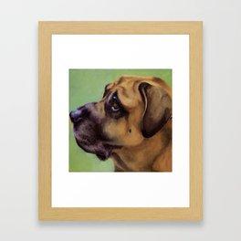 Rex - Portrait of a dog Framed Art Print