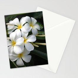 Wild Tropical Hawaiian Plumeria Flowers Stationery Cards