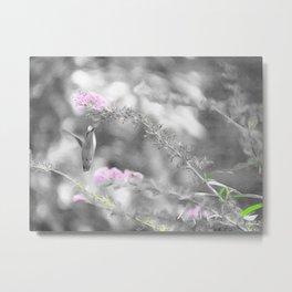 Digita Hummingbird painting. Metal Print