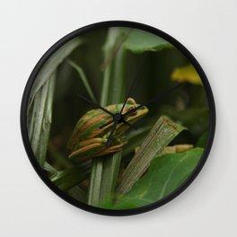 Cute Frog Wall Clock